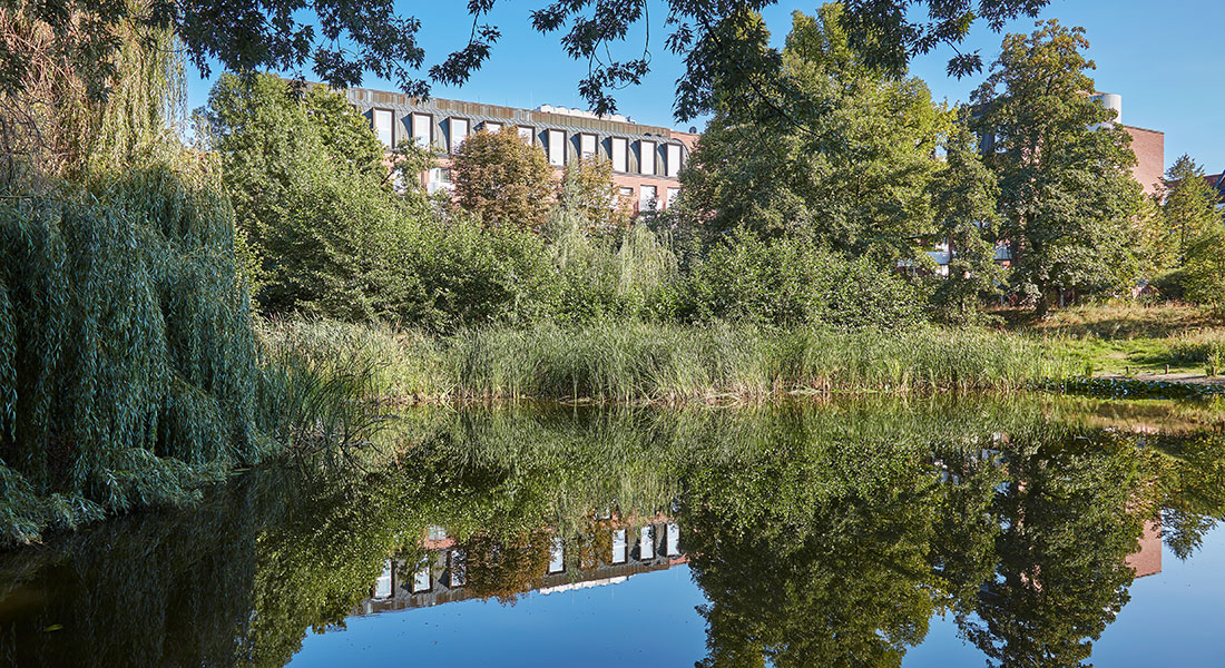 Living Hotel Nachhaltigkeit und Umwelt