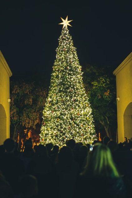 Weihnachtsbaum Benrather Schloss Weihnachtsmarkt
