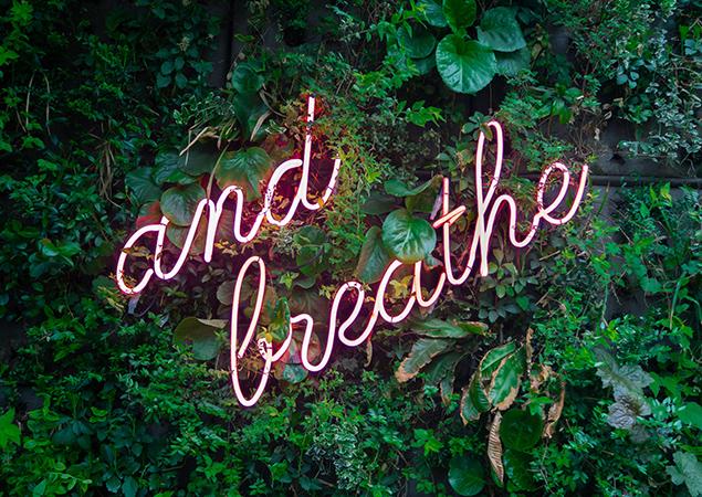 """Neonschrift """"and breath"""" auf Planzenhintergrund"""